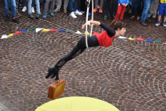 Fotos und Presse von Langer Nacht des Tanzes, Mitglied von Zirkus Meer,3.6. 2016